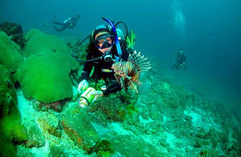 海参生活的海洋环境2