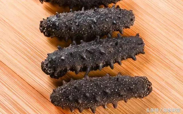 为什么要吃干海参而不是鲜海参,你真的知道吗?