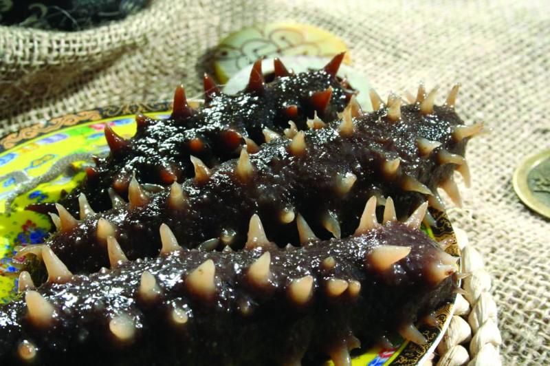 吃海参前有哪些需要注意?