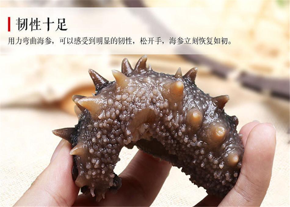 野生海参和养殖海参的区别