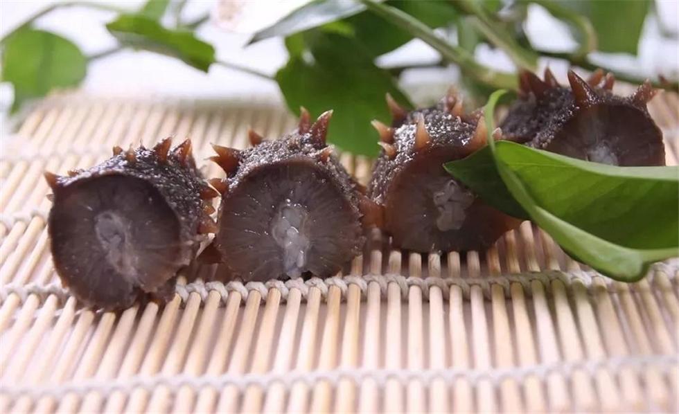 海参的功效都来自于海参的哪些部位?