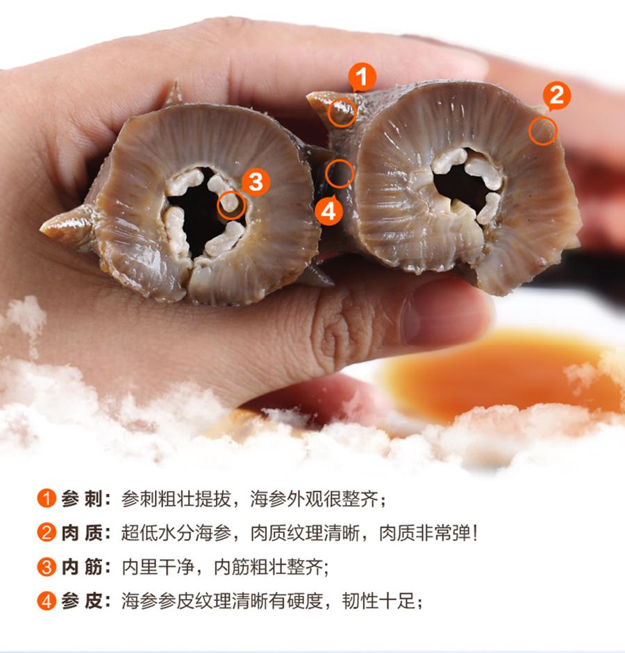 正宗海参的品质和特征